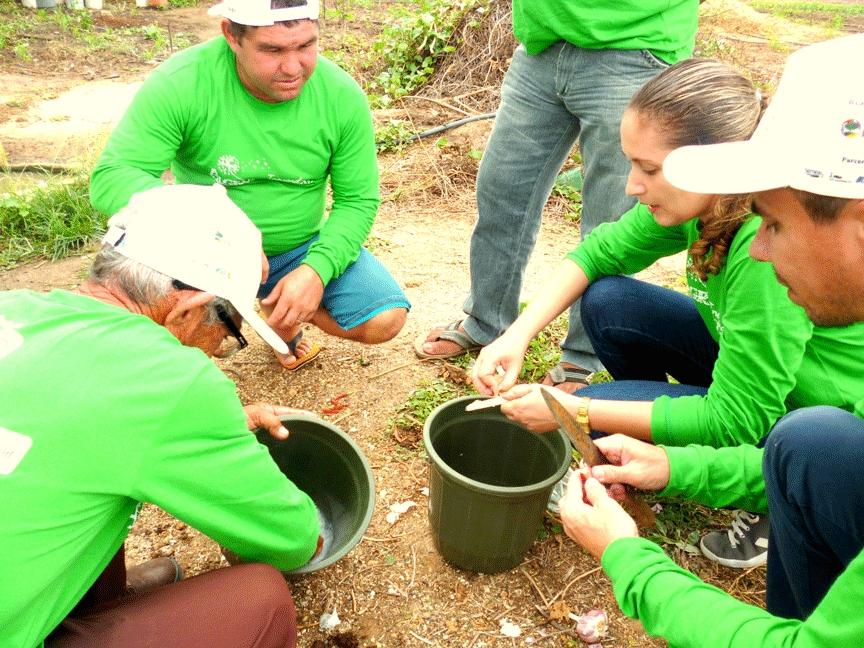 Projeto Inovando em Agroecologia